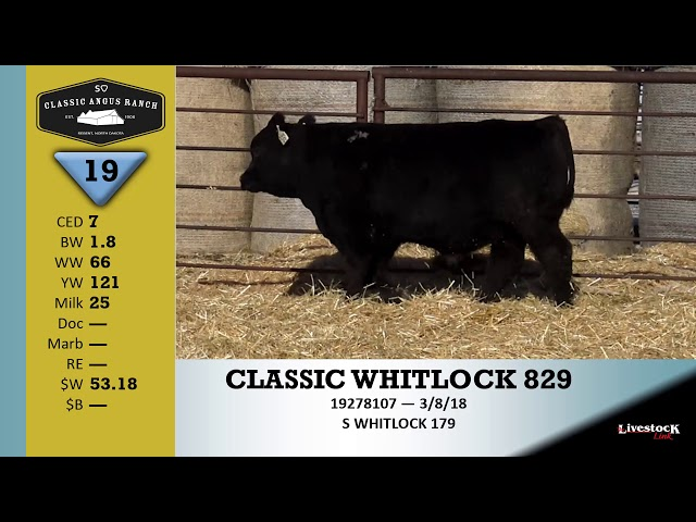Classic Angus Ranch Lot 19