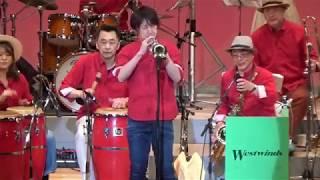 """兵庫県西宮市のアマチュアビッグバンド、ウエストウインズジャズ オーケストラです。 曲は熱帯JAZZ楽団の""""Sing Sing Sing"""" です。 ソロはトロンボーン/磯谷昌利、 ..."""