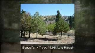 PORTOLA/SIERRA VALLEY Real Estate MLS#201401077 Plumas County California by CAROL MURRAY