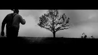 GOD IS AN ASTRΟNAUT - Barren Trees (Official Video)   Napalm Records