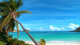 Okyanus sahil deniz sesi huzur.Nature Sounds Ocean Waves