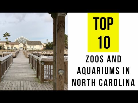 TOP 10. Best Zoos and Aquariums in North Carolina