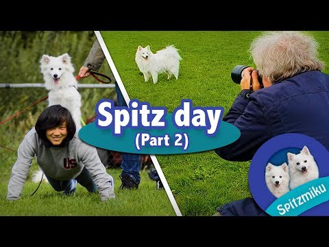 Spitz Day - DOGA + Photoshoot (Part 2)