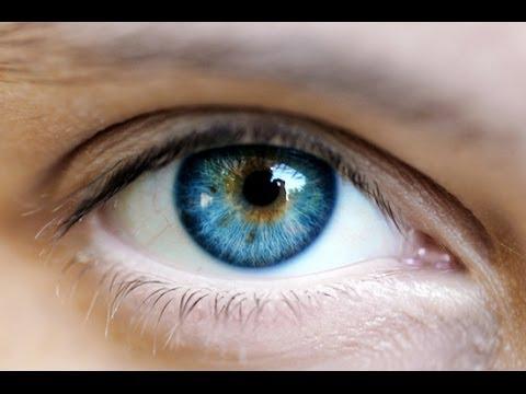 Глаукома – Лечение глаукомы народными средствами и методами