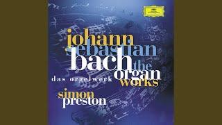 J.S. Bach: Sonata No.3 In D Minor, BWV 527 - 3. Vivace