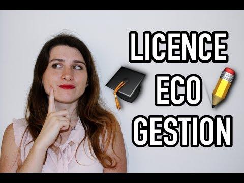 Tout sur la Licence Economie-Gestion - Mon expérience