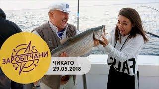 Заробітчани - Чикаго - Выпуск 15 - 29.05.2018