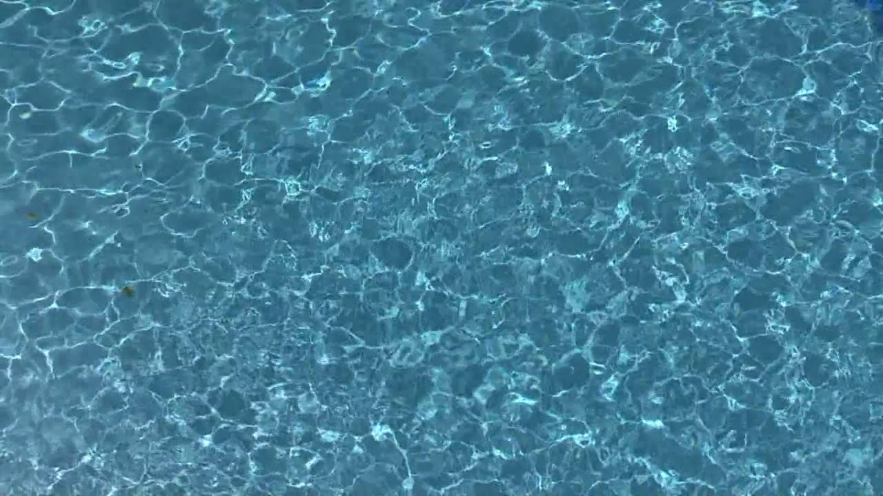 Pool Hd Visual Short Youtube