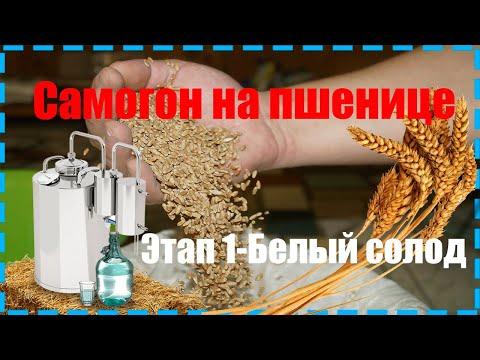 Пшеничный самогон белая схема- Этап 1- Как приготовить белый солод