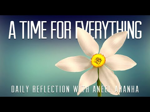 Daily Reflection with