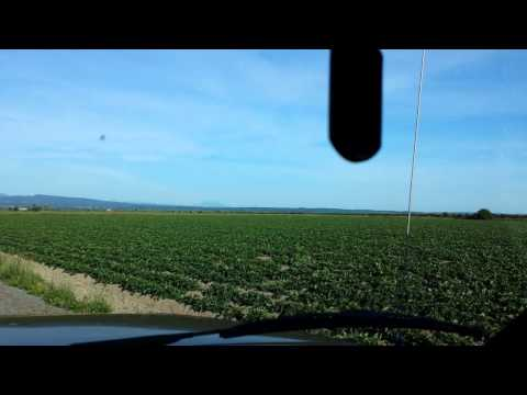 Open farmland, still able to produce, Awesome...