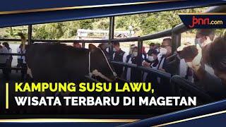 Kampung Susu Lawu di Magetan Bisa Jadi Alternatif Untuk Liburan - JPNN.com