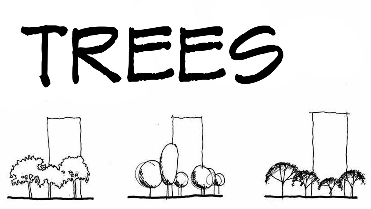 trees for architecture sketches architecture daily sketches youtube - Architecture Drawing Of Trees