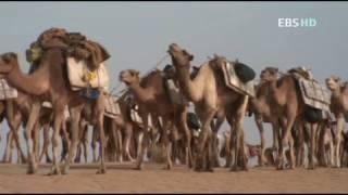 EBS 이슬람 문화기행 06 아프리카로 간 이슬람
