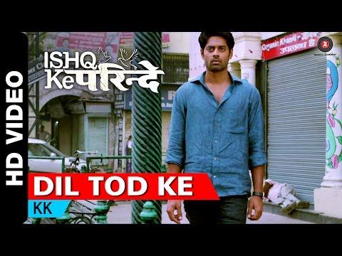 Dil Tod Ke | Ishq Ke Parindey | KK | Rishi...