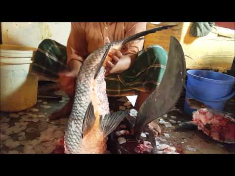 Biggest Indian Major Carp Fish Cut Into Pieces In Fish Market