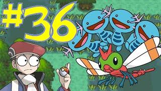 Pokémon Platinum #36: GB and the Great Marsh