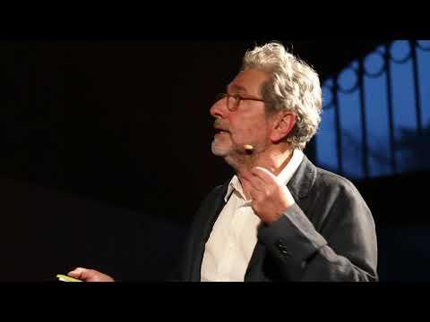 Apprendre à penser virus | Laurent Roux | TEDxSion