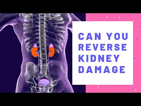 can-you-reverse-kidney-disease?-how-i-improved-my-kidney-function
