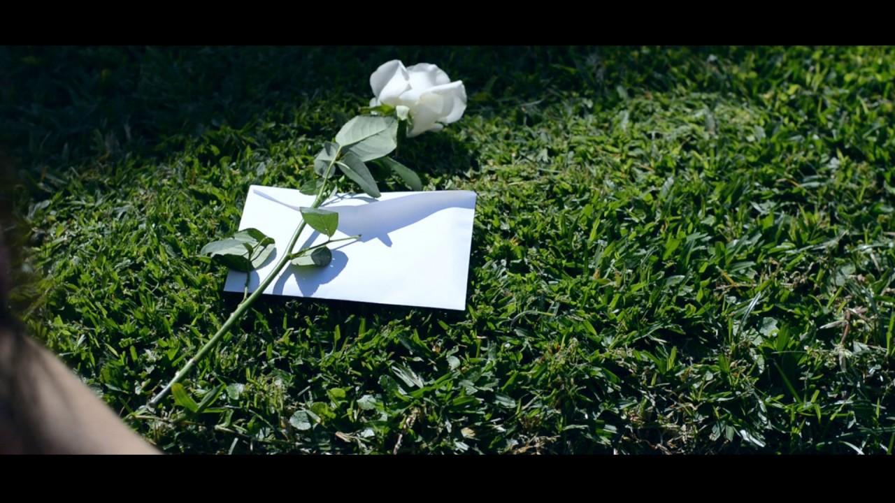 Resultado de imagen para cartas a los perdidos reseña