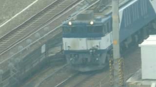 JR貨物 EF64 貨物列車 名古屋駅付近を走行 愛知機関区 2019.2.9
