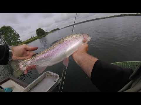 Catching Rutland Water's Pin Fry Feeding Trout