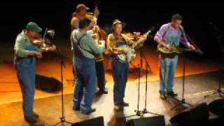 "TENNESSEE MAFIA JUG BAND     ""Gathering Flowers From The Hillside"""