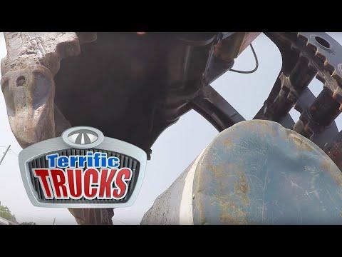 Terrific Trucks: Terrific Trucks In Action  Universal