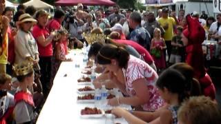Breaux Bridge Crawfish Festival 2009 Part #3