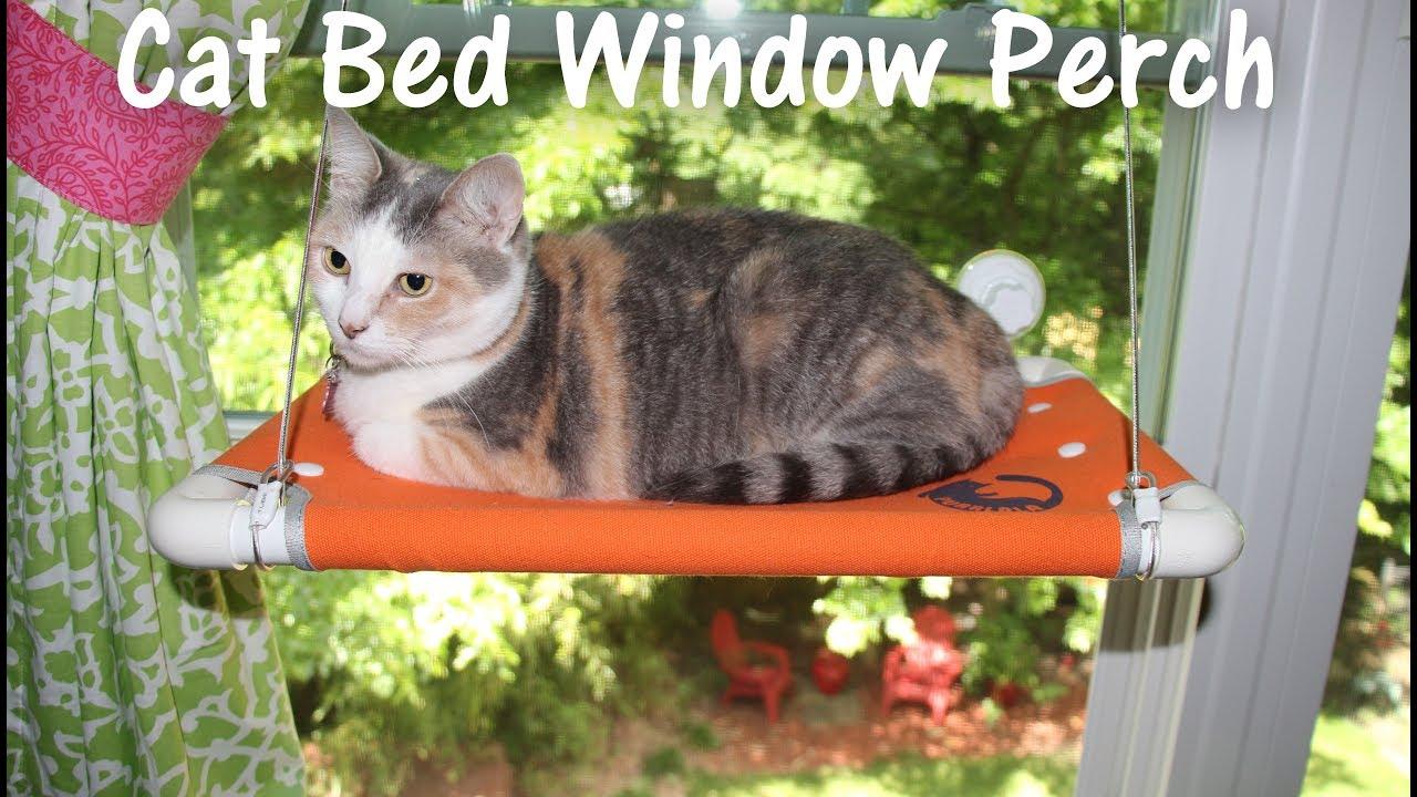 purrlala cat bed sunny window perch cat perch seat review