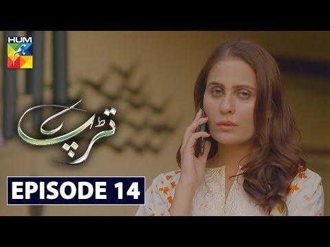 Download Tarap Episode 14 HUM TV Drama 31 May 2020