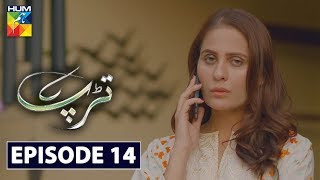 Tarap Episode 14 HUM TV Drama 31 May 2020