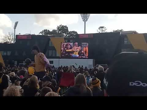 Last minute of the RICHMOND PREMIERSHIP at PUNT ROAD