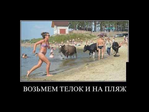 Девушки приколы на пляже голые - видео онлайн