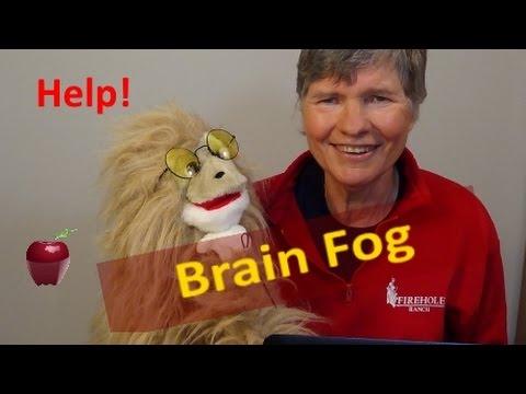 Brain Fog Causes, Fixes