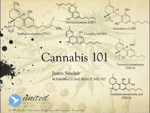 Cannabis 101 - Justin Sinclair - Herbalist, Pharmacognosist & Educator