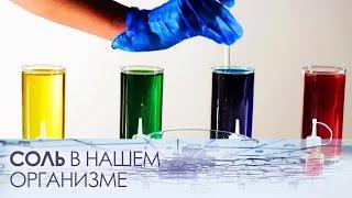 Нужна ли нашему организму соль?