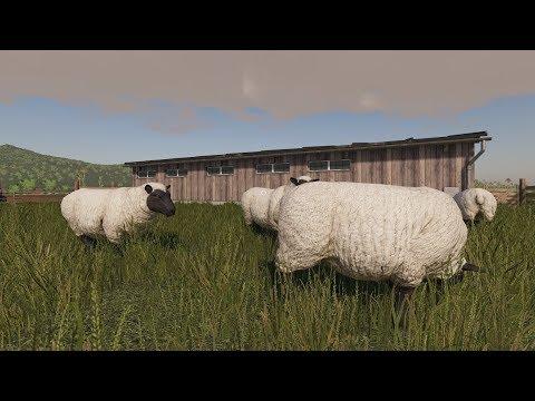 FÅRSKALLAR | Farming Simulator 19
