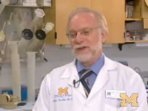 An Introduction to Breast Cancer Stem Cells
