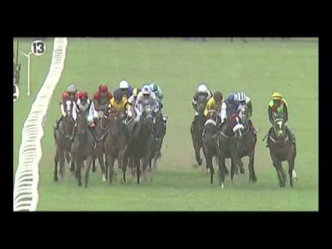 Royal Ascot / The Chief Justice Cup / The Colts Championship Stakes