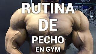 RUTINA DE PECHO MAS GRANDE Y REDONDO I ISMAEL MARTINEZ