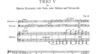 Play Trio for Clarinet, Cello and Piano in A Minor, Op. 114 III. Andantino grazioso