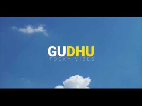Tocky Vibes Gudhu official video