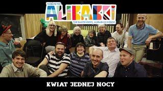 Tribute to Alibabki – Kwiat jednej nocy feat. Kuba Kaczmarek