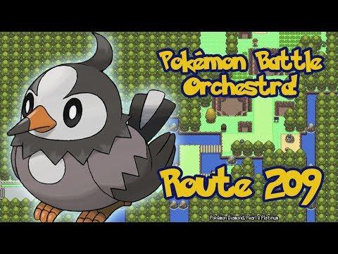 Pokémon Battle Orchestra! Route 209