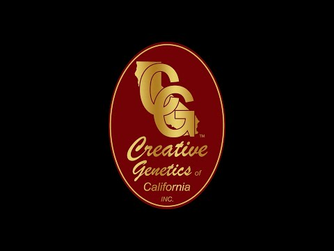 Welcome to Creative Genetics of California