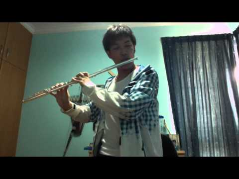 At the Cross - Hillsong - Flute Cover