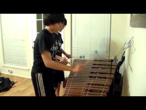Super Mario Medley on Marimba (practice part 1)