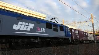 2019/01/10 JR貨物 朝の定番貨物列車5本とやはり来た遅れ貨物列車2本