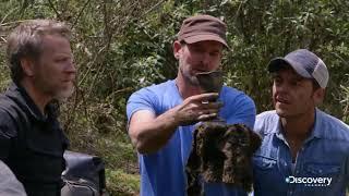 В поисках сокровищ: змеиный остров (сезон 2, серия 8) - Чаша иезуитов